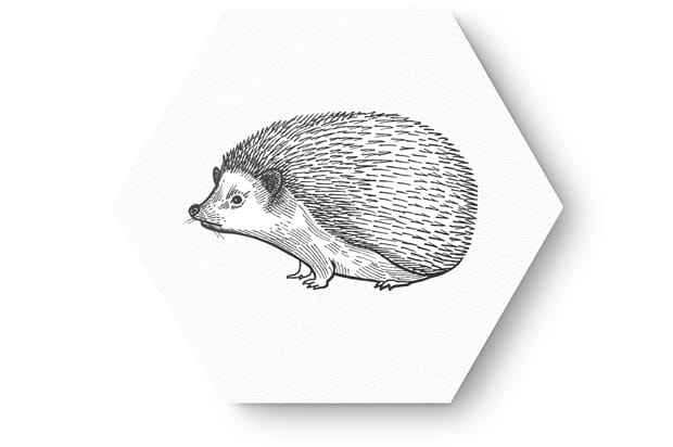 getekende dieren2