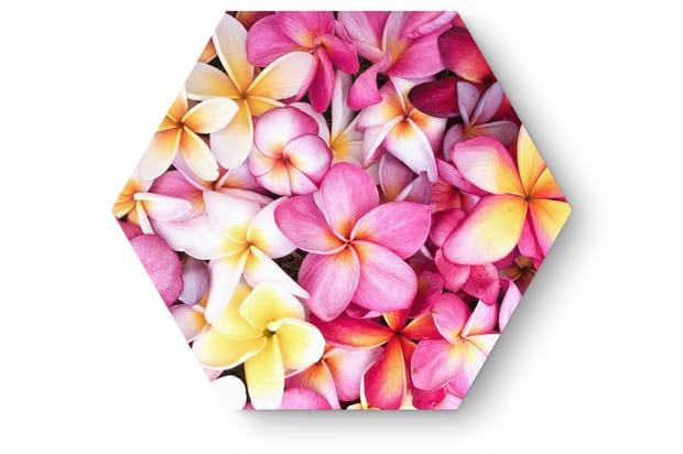 bloemen2